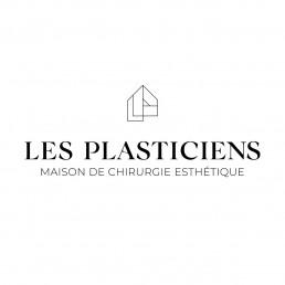 Les Plasticiens